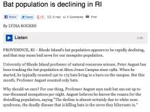 RI Bat Population is Declining