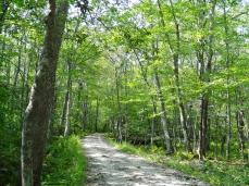 Wilbour Woods, RI