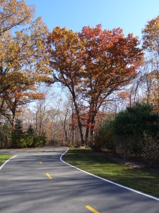 Blackstone River Bikeway at Rte. 295 Rest Area in Cumberland